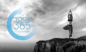 yogobe jooga